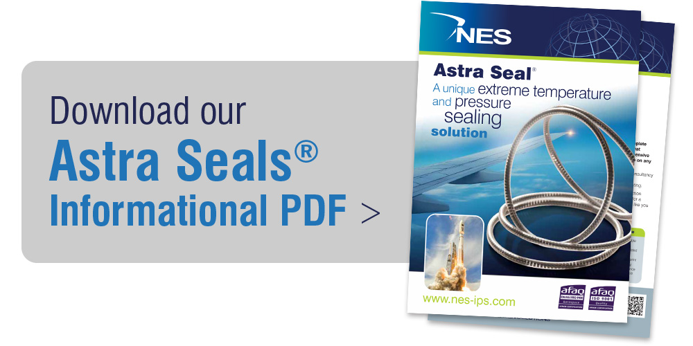 Download our NES Astra Seals Product PDF
